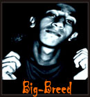 Big Breed - The Best Of